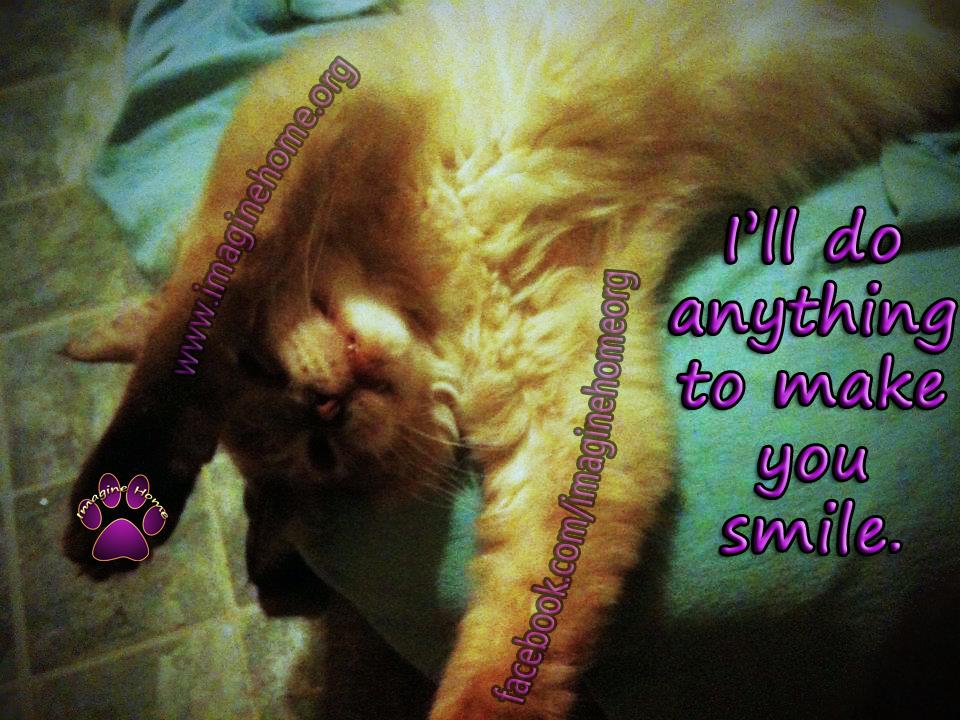 i'll do anything to make you smile